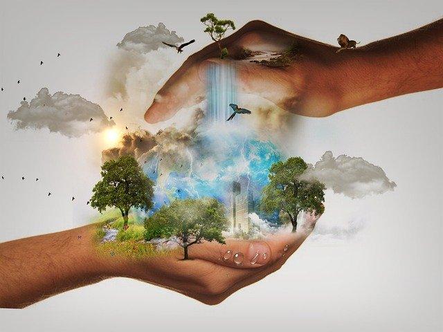 Verantwortungsbewusster Konsum, ein Schlüssel zum Schutz der Umwelt