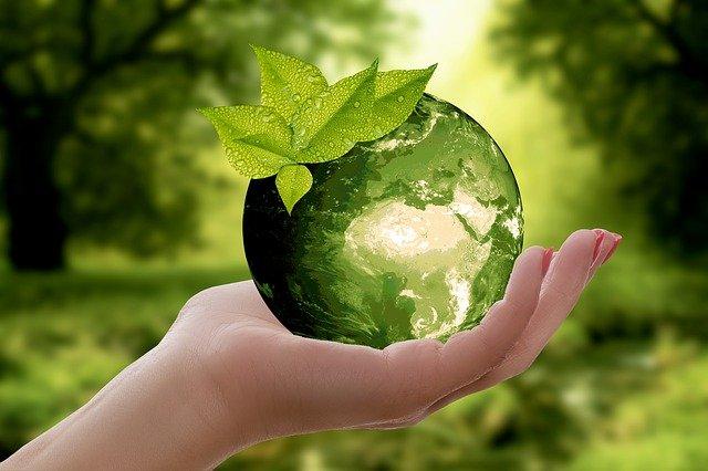 Wie kann man mehr Menschen für Nachhaltigkeit begeistern?